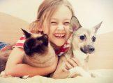 Freunde fürs Leben? Kinder und Haustiere