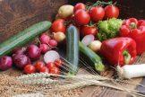 Gemüse – lecker und gesund