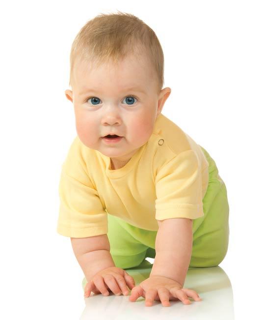 Das erste Jahr mit Baby: Der achte Monat