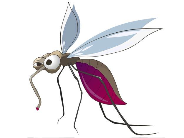 Die Tücken mit den Mücken